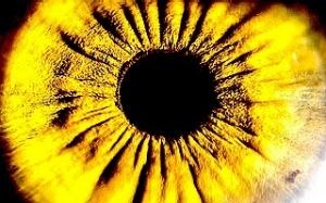 Image of eye close up